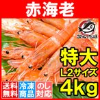 赤海老 赤えび 4kg 特大 L2 30〜60尾 業務用 2kg×2箱 赤エビ あかえび アカエビ 寿司 刺身用