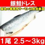 (サーモン 鮭 サケ) 銀鮭ドレス(生 甘口)2.5〜3kg