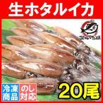 ほたるいか ホタルイカ (刺身用 生ホタルイカ 富山産 20尾)