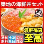 築地の海鮮丼セット(至高・約2杯分)王様のネギトロ&無添加生ウニ&北海道産いくら