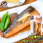 さば煮付け 2枚×5パック さばの煮付け 鯖煮付け さば サバ 鯖 煮魚 煮付け 切り身 魚菜 ファストフィッシュ レトルトパック
