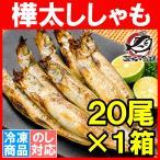 柳葉魚 - 子持ちからふとししゃも20尾(大サイズ樺太シシャモ)