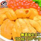 生ウニ 生うに 冷凍 無添加 天然 1kg 100g×10パック(ウニ うに 雲丹)