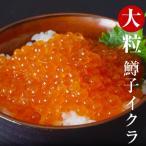 いくら イクラ 食品 大粒 鱒子イクラ 約250g(4〜5人前) アウトレット 冷凍