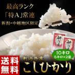 米 お米 10kg 「こしひかり」 新潟県産 5kg×2袋 うるち米 精白米 送料無料 ○