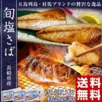 ≪送料無料≫長崎県産 旬サバ(ときさば) 塩さば 1袋2枚入り 約220g × 3P ※冷凍 ☆