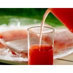『尾花沢スイカ100%ジュース』 100g×30袋 [酸化防止剤無添加] ※冷凍