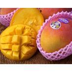 マンゴー メキシコ産 超大玉 HADEN(ヘーデン)種 マンゴー2玉 合計1kg以上(1玉500gUP) 常温 送料無料 簡易包装
