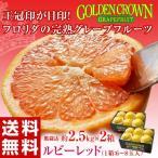 ショッピングフルーツ フロリダ産 ゴールデンクラウングレープフルーツ ルビー 6〜8玉 約2.5kg frt☆