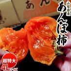 《送料無料》山梨産 「あんぽ柿」 1玉(約125g)×9個 frt ☆