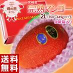母の日 宮崎県産 完熟マンゴー 2Lサイズ(350〜449g)以上 1玉 カーネーション(造花)・メッセージカード付 化粧箱入 送料無料 常温