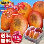 訳あり 沖縄マンゴー 大ボリュームの約1.5kg(3〜6玉) 沖縄県産 送料無料 常温又は冷蔵
