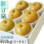 鳥取県オリジナル品種「新甘泉(しんかんせん) 梨」 鳥取県産 約2kg(4〜8玉) 送料無料 ※冷蔵