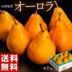 送料無料 『西洋梨 オーロラ』 山形県産 6〜10玉 約2kg