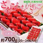 いちご イチゴ 苺 ギフト 徳島県佐那河内産 さくらももいちご 化粧箱 20〜24粒 約700g ※冷蔵 送料無料