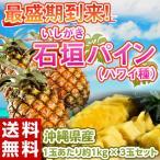 《送料無料》沖縄県産 石垣パイナップル 1玉あたり約1kg×3玉セット frt ○