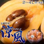 長崎県産 希少びわ「涼風」2〜4Lサイズ 約500g ※冷蔵 ☆