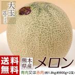 熊本県産 メロン(青肉又は赤肉) 大玉2Lサイズ 2玉セット 約1.8kg(900g前後×2玉) 常温 送料無料