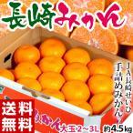 みかん 送料無料 大玉手詰め 長崎みかん 2〜3L 約4.5kg