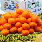 《送料無料》静岡産 三ヶ日みかん(青島種) 3〜4Lサイズ 約8kg frt ○