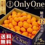 みかん 送料無料 佐賀県産 みかん Only One 秀品 S〜2S 約5kg 豊洲市場 JAからつ オンリーワン