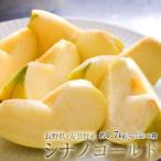 りんご リンゴ 林檎 長野県 安曇野産 シナノゴールド 約1.7kg 風袋込み (5〜7玉)×2箱 送料無料