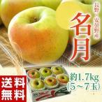 りんご リンゴ 林檎 長野県 安曇野産 名月 1箱 約1.7kg (5〜7個入)送料無料