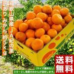 送料無料 和歌山県産 JA紀の里 訳ありみかん 約5kg (大〜小込)