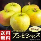 《送料無料》りんご 青森県産 「アンビシャス」 約3kg (9〜12玉) ※常温 frt ☆