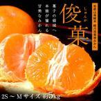 職人 橋爪流栽培みかん「俊菓(しゅんか)」和歌山産 2S〜Mサイズ 約5キロ frt ☆