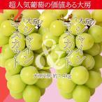 葡萄 ぶどう 山梨県産 特大シャインマスカット 2房 合計約1.4kg ※常温 送料無料