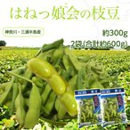 神奈川県 三浦半島産 『はねっ娘会の枝豆』 約300g×2袋(合計約600g) 冷蔵