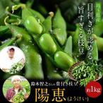 埼玉県産 岡永さんの葉つき枝豆「陽恵(ようけい)」 約350g×3袋(さやの重量で合計約1kgになるようにお詰めします。) ※冷蔵 ☆