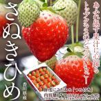 香川県産 さぬきひめイチゴ 約1kg(目安として25〜42粒) ※冷蔵 frt☆