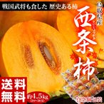 《送料無料》鳥取県産 「西条柿」 2?3L 秀品 24?28玉(約5kg) ※常温 frt ○