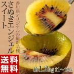 キウイ 送料無料 香川県産 さぬきエンジェルスイート S〜2L (11〜14玉入) 約1.2kg ※簡易梱包