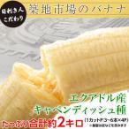 さよなら「築地市場のバナナ」 エクアドル産キャベンディッシュ種 約2kg(3〜6本×4P) ※常温  frt ☆