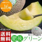 ≪送料無料≫熊本県八代産メロン 肥後グリーン 1玉 約1.8kg 糖度16度基準 ※常温 frt ☆