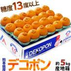 『デコポン』 熊本県産柑橘 約5kg 18〜24玉 産地箱入 ※常温 送料無料