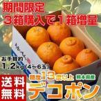送料無料 熊本県産 デコポン 約1.2kg(4〜6玉) 【3箱買えば1箱オマケ】 ※常温
