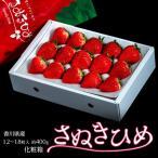 いちご イチゴ 香川県産 さぬきひめ 12〜18粒入 約400g 化粧箱 ※冷蔵 送料無料