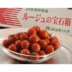 トマト フルーツトマト ミニトマト とまと 野菜『ルージュの宝石箱』群馬産 約900g
