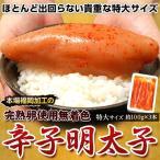 tsukijiichiba_203q04669