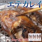 山陰産 エテカレイ(宗八かれい) 干物 6尾:約480g(2尾×3袋) ※冷凍 sea 〇