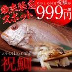 山陰沖産 「祝鯛(いわいだい)」 れんこ鯛:大サイズ 250g  便利な下処理済み ※冷凍 sea ☆
