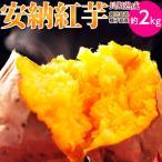 雅虎商城 - 安納芋 送料無料 種子島産 循環型農法「安納紅芋」 正規品 約2kg