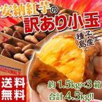 《送料無料》種子島産 「安納紅芋」 小玉 約1.5キロ※3箱買ったら1箱増量! 安納芋 訳あり小玉 ◯