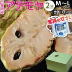 《送料無料》三重産 アテモヤ2玉 M〜Lサイズ 合計1kg以上 化粧箱入り frt ○