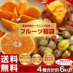送料無料!豊洲開場記念「フルーツ福袋 合計約6kg」みかん・種なし柿・安納紅芋・おまけの甘栗 豊洲市場