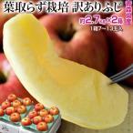 りんご サンふじ 青森県産 訳あり葉とらず ふじ 約3kg×2箱 (1箱:目安として7〜13玉) 岩木山りんご生産出荷組合 送料無料